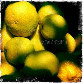 7mallorca.lemon