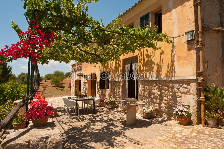 mediterranean country side house with pool, garden and lovely interior, Garten Ideen
